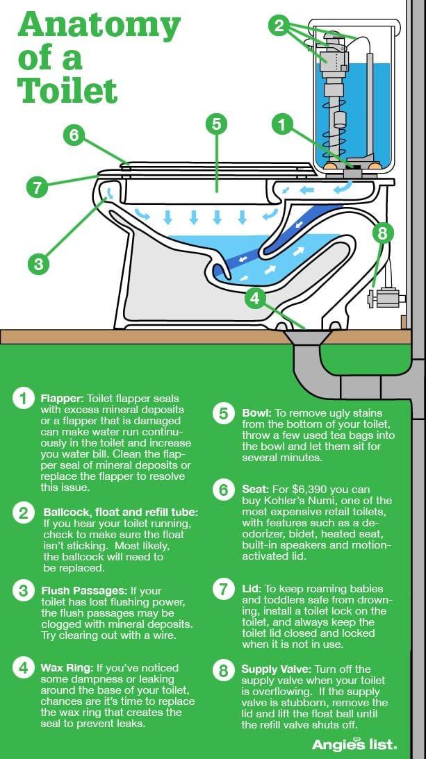 Anatomy of a Toilet