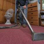 man steam cleaning red carpet in bedroom