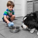 boy feeds dog (Photo by Brandon Smith)