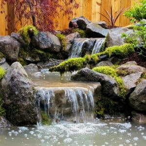 Pond with stone waterfall by Affordable Ponds