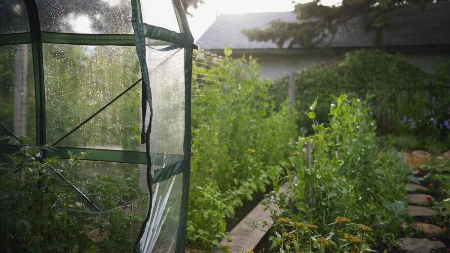 flexible greenhouse with vegetable garden