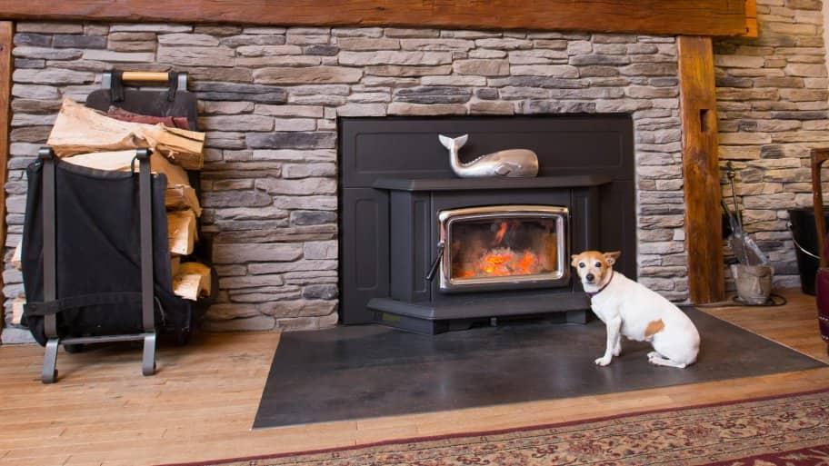 Dog by fireplace