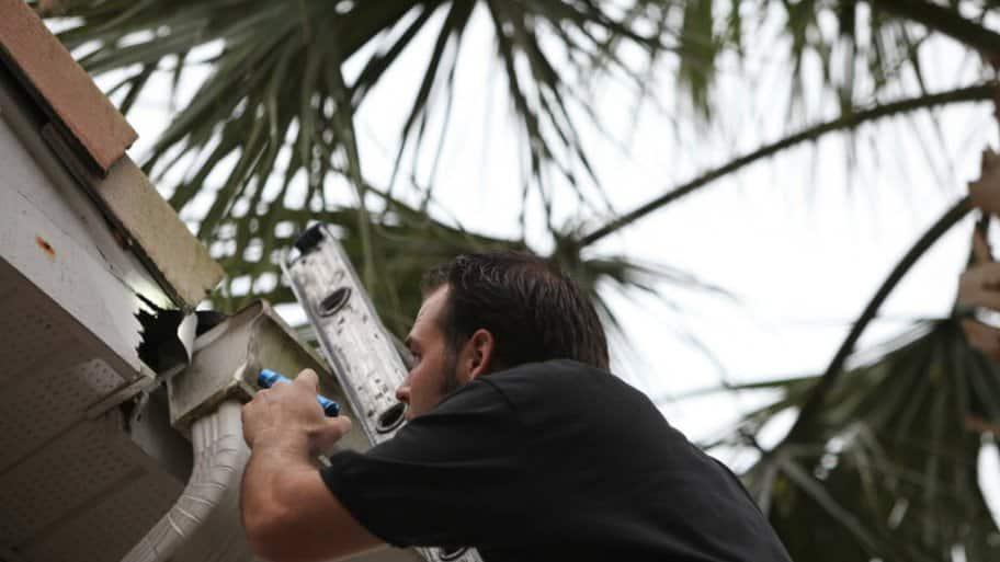 An exterminator checks a roof
