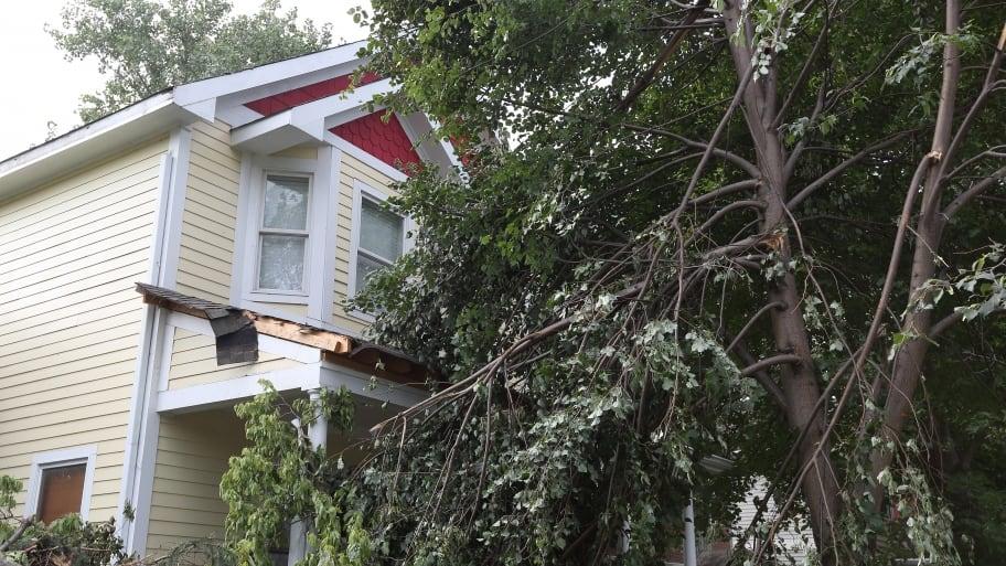tree storm damage on home