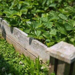 garden planter box made from reclaimed scrap wood