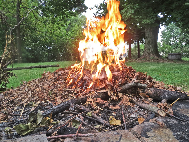firewood angie u0027s list