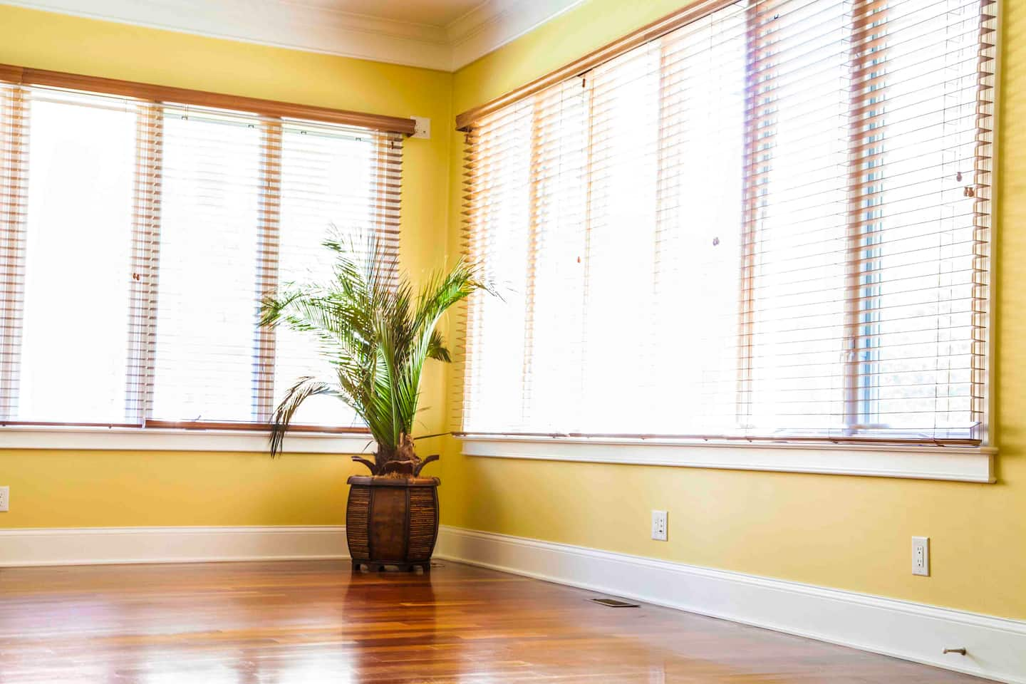 Interior window frames - Windows With Blinds In Room Photo By Photo By Katelin Kinney