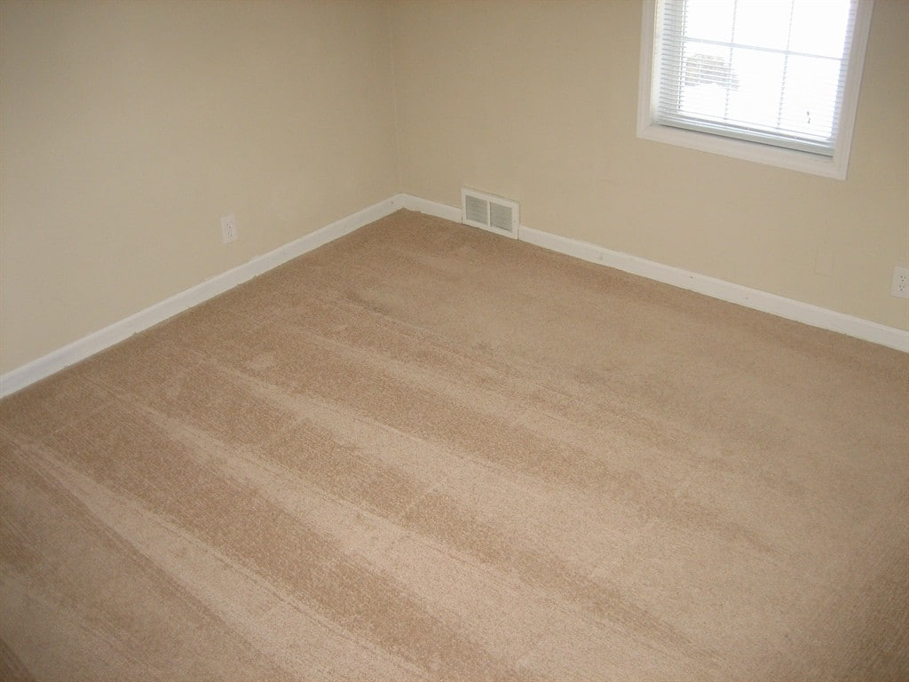 How to Clean Carpet After a Flood | Angie's List