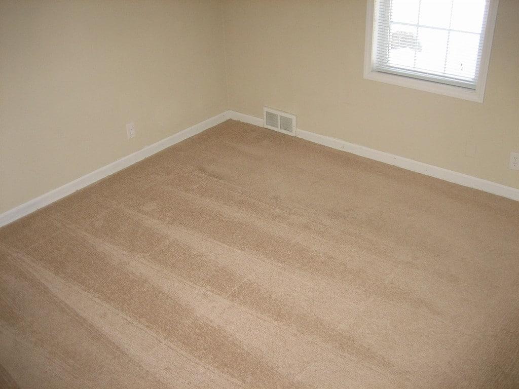 Cleaned Carpet Now Smells Like Mildew | Carpet Menzilperde.Net