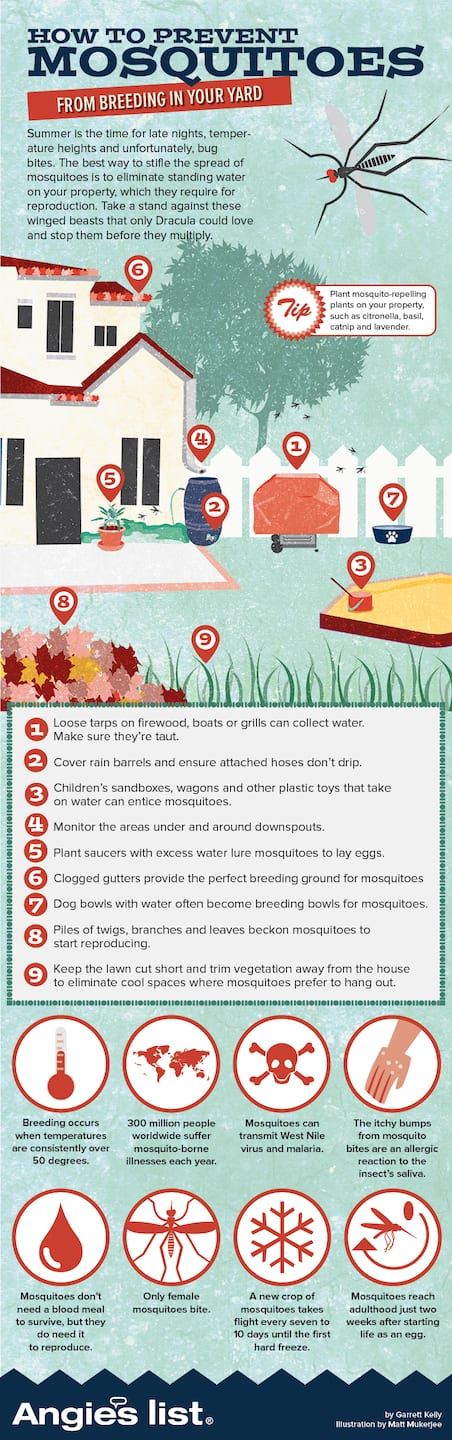 infographic how to combat mosquitoes angie u0027s list