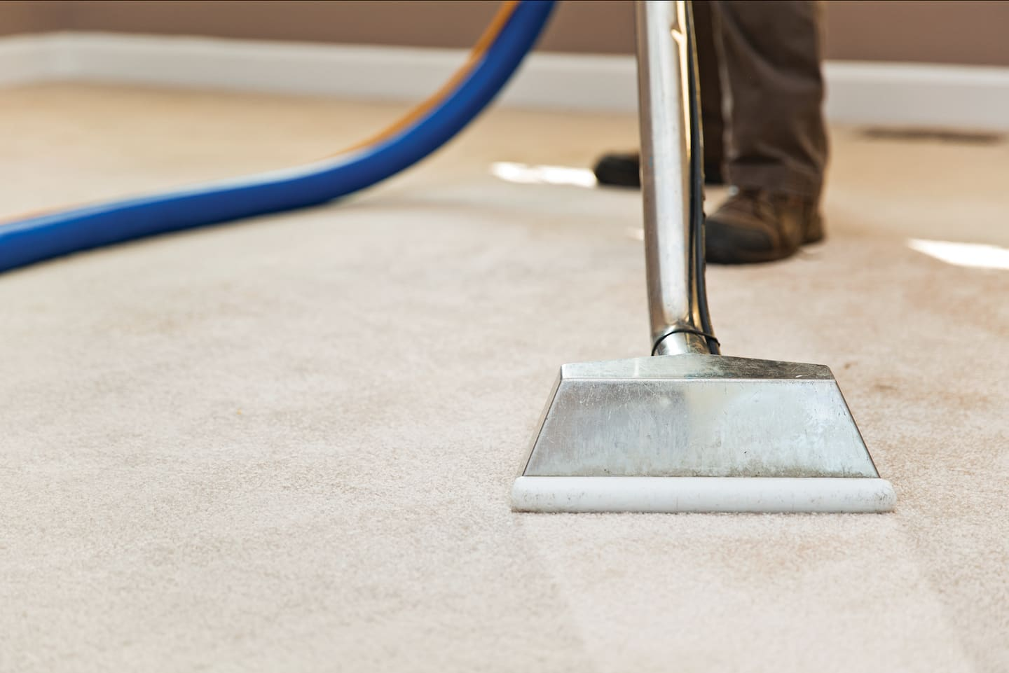 What to Do Before a Carpet Cleaner Arrives