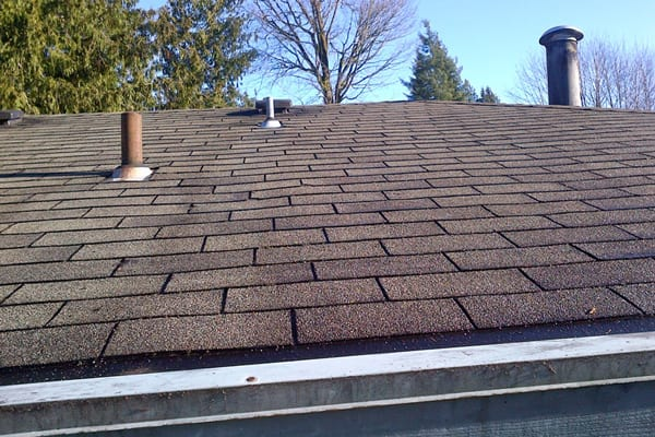 Image result for How to Choose a Roof Cleaner for Your Needs
