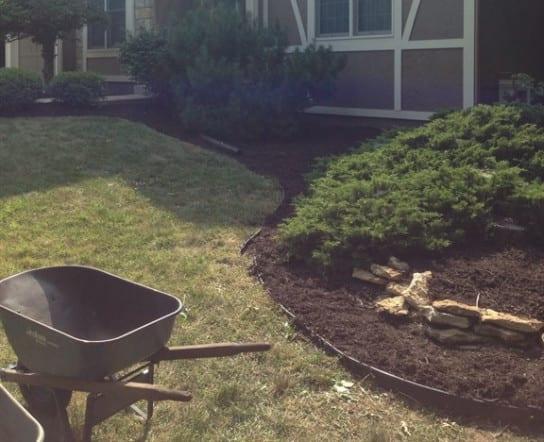lawn-yardwork