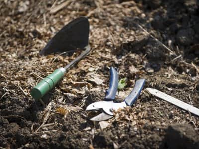 garden tools on the ground