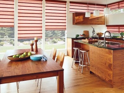 Hunter Douglas Vignette Modern Roman Shades from Decorview