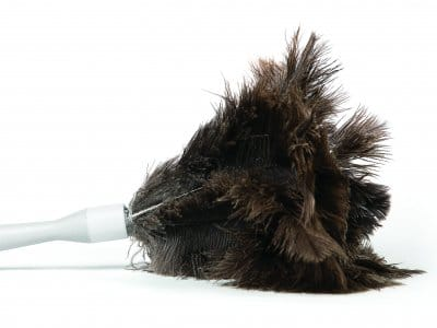 A feather duster on a white background