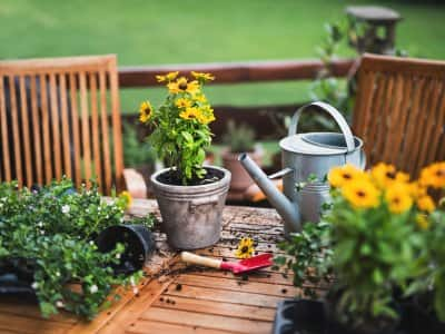 a wooden patio table with plants, dirt