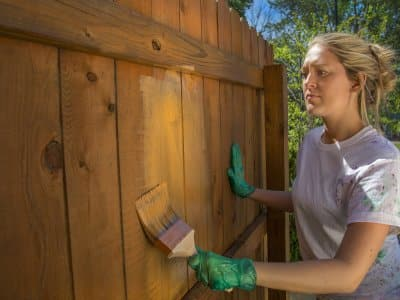 Woman staining a backyard fence.