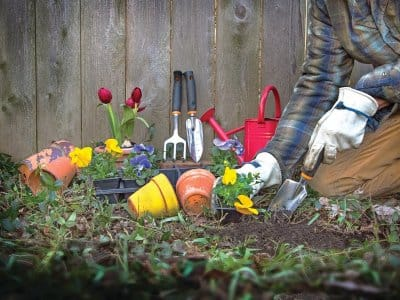 flower pots, pansies, garden tools