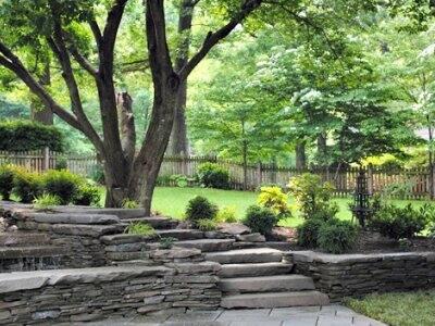 lush green landscaped lawn