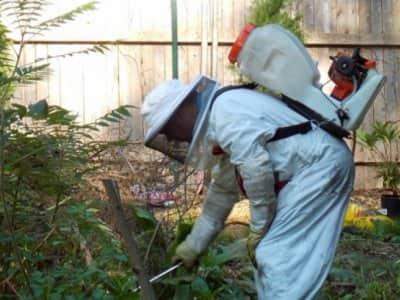 Pest control service exterior