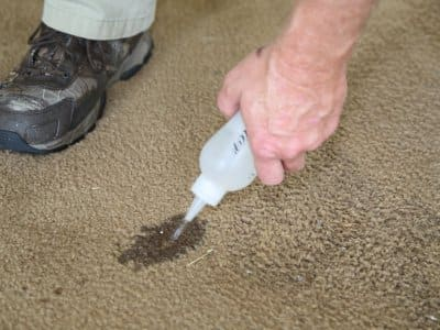 neutralizer on carpet during carpet dyeing