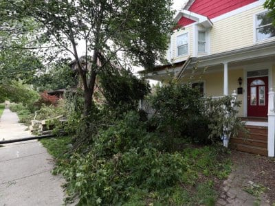 a house with a tree down in front