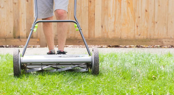 mowing grass planted from seed