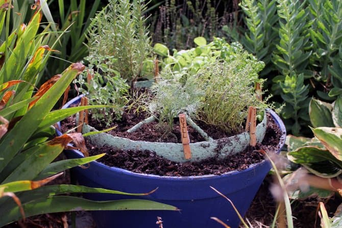 rustic wheel herb garden-_AngieHolden_CountryChicCottage | Angie's List