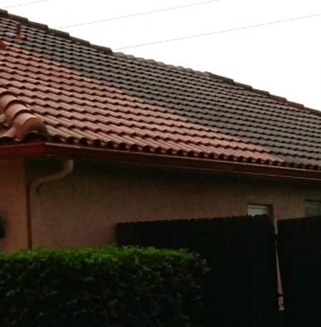 What Does Roof Cleaning Cost – Lichen Removal From Roof Shingles