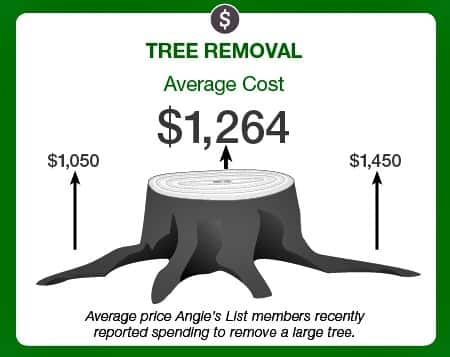 For Instance Smaller Trees That Are Only About 20 Feet Will Be Less Per Foot Than Say A 90 Tree