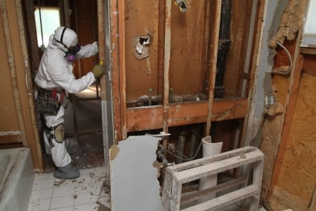 technician removes drywall to eliminate mold in bathroom