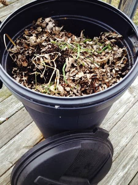 A closed-top compost bin helps keep out rodents looking for food scraps. (Photo by Rachel Hardy)