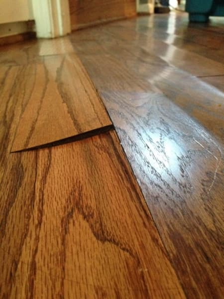 Laminate flooring buckling at seams meze blog for How to fix buckling hardwood floors