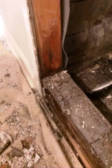 Mold In Shower Underneath Tile