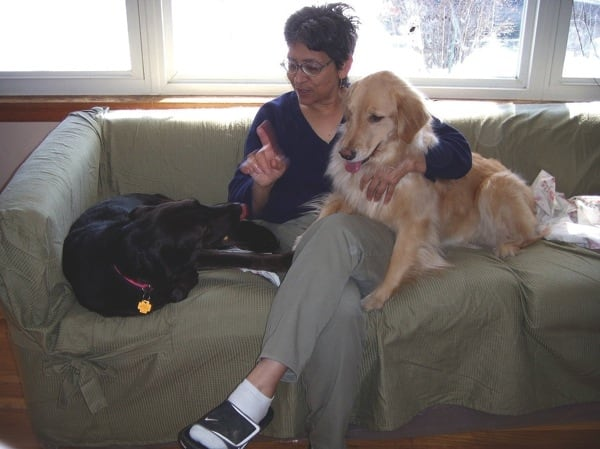 Dogs must come for a test visit to gauge their temperament before staying at Miss Vivian's while their owners are away. (Photo courtesy of Lisa Madrid)