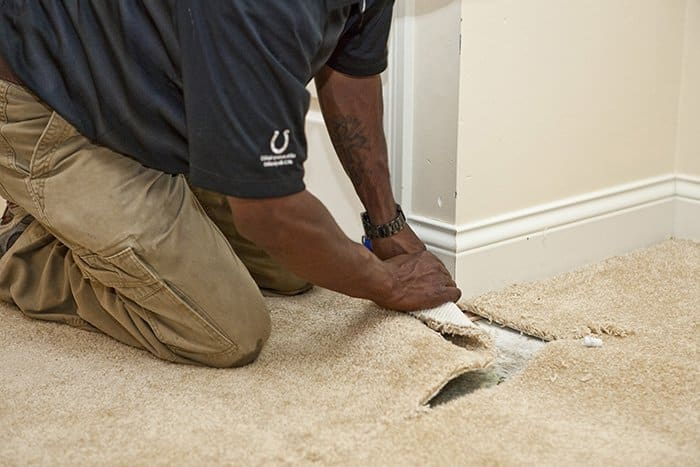 carpet in homes with flooding can be restored and reused with proper cleaning techniques