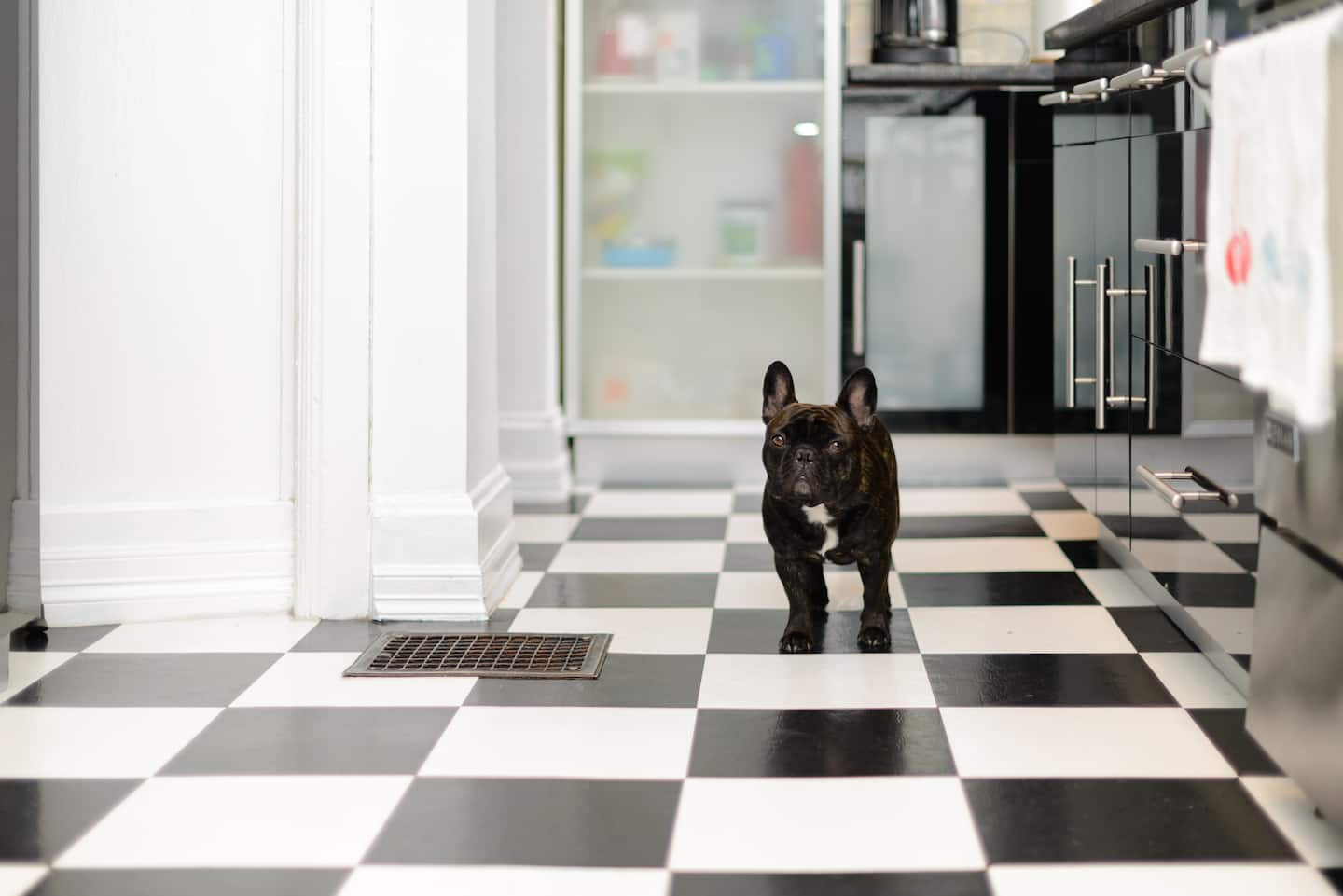 black and white kitchen flooring
