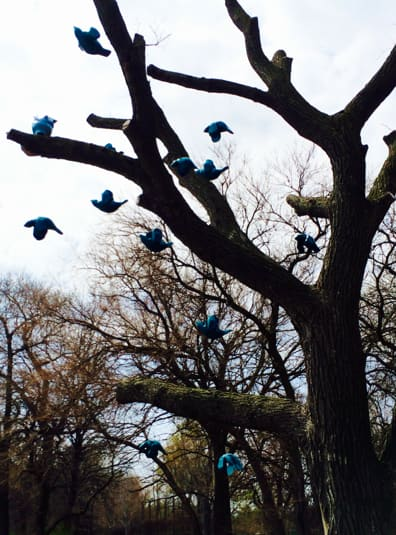 "Margot McMahon's ""Flock"" is on display in Jackson Park. The tree used in this sculpture is a 125-year-old elm. (Photo courtesy of the city of Chicago)"