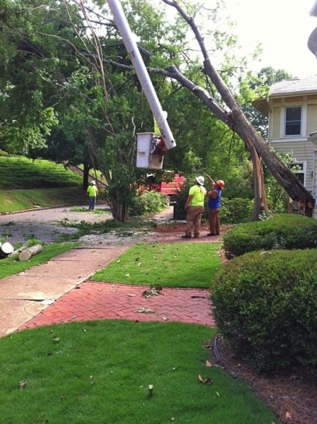 Storms can rip trees from the ground and snap limbs. Learn how to safely assess tree damage after a storm. (Photo courtesy of Angie's List member Julie L., Birmingham, Alabama)