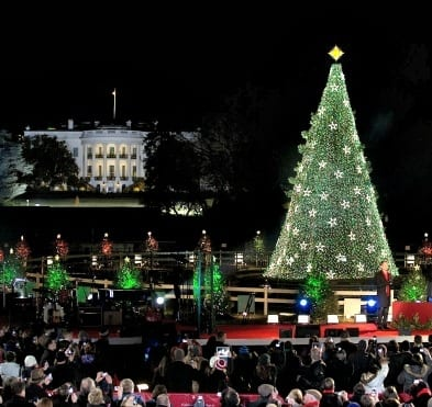 Tree-lighting ceremonies aren't just for the White House and Capitol any more. Venues across D.C. are getting in on the action. (Photo courtesy of the White House)