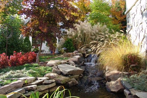 There's no shortage of plants that can keep your landscaping looking vibrant throughout the fall months, says Whalen. (Photo courtesy of Professional Grounds)