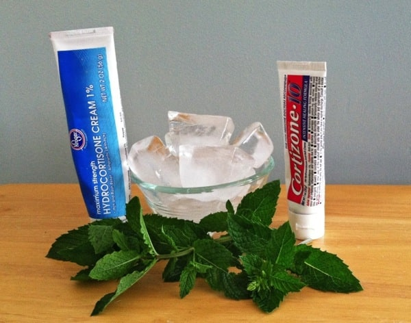 Create a spray using peppermint oil to combat ants and spiders. If you do get bit, apply ice or cortisone cream for itch relief. (Photo by Staci Giordullo)