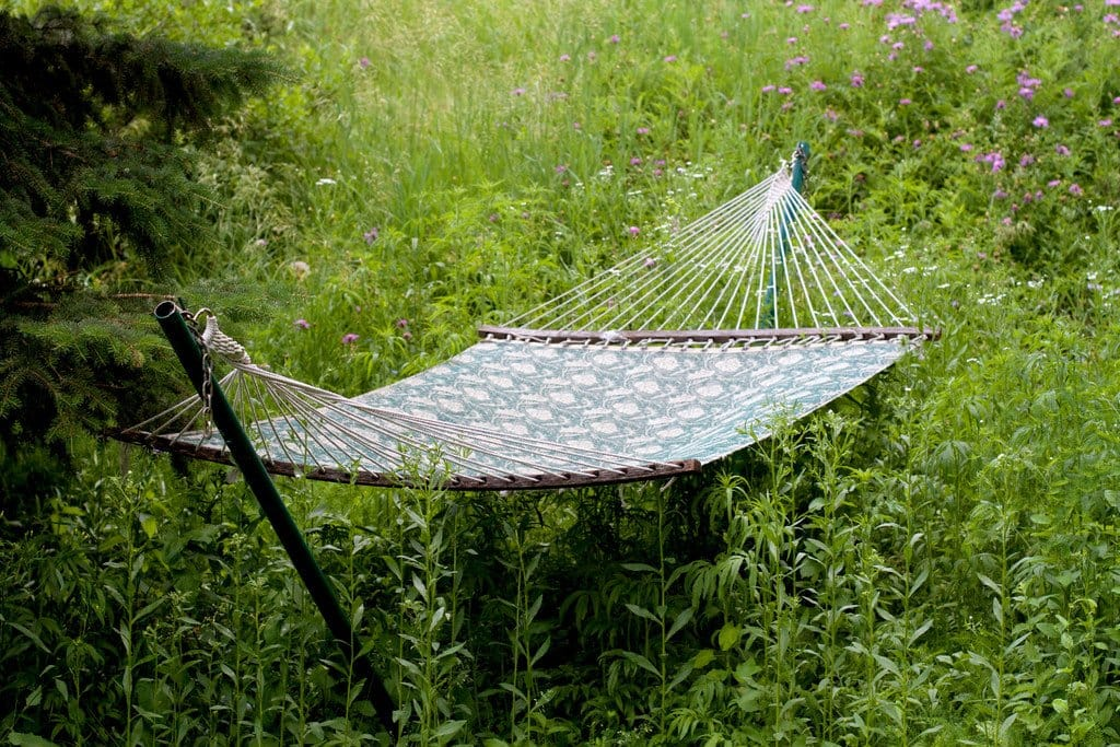 Hammock in the weeds