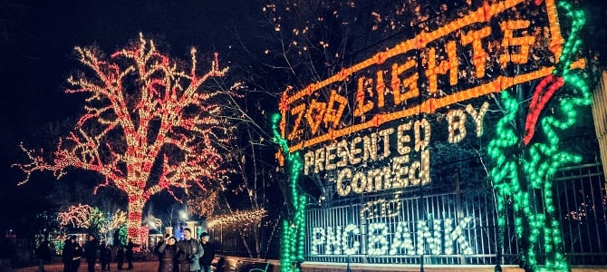 Lincoln Park's Zoo Lights is lit with mover 250,000 LED holiday lights. (Photo courtesy of Lincoln Park Zoo)