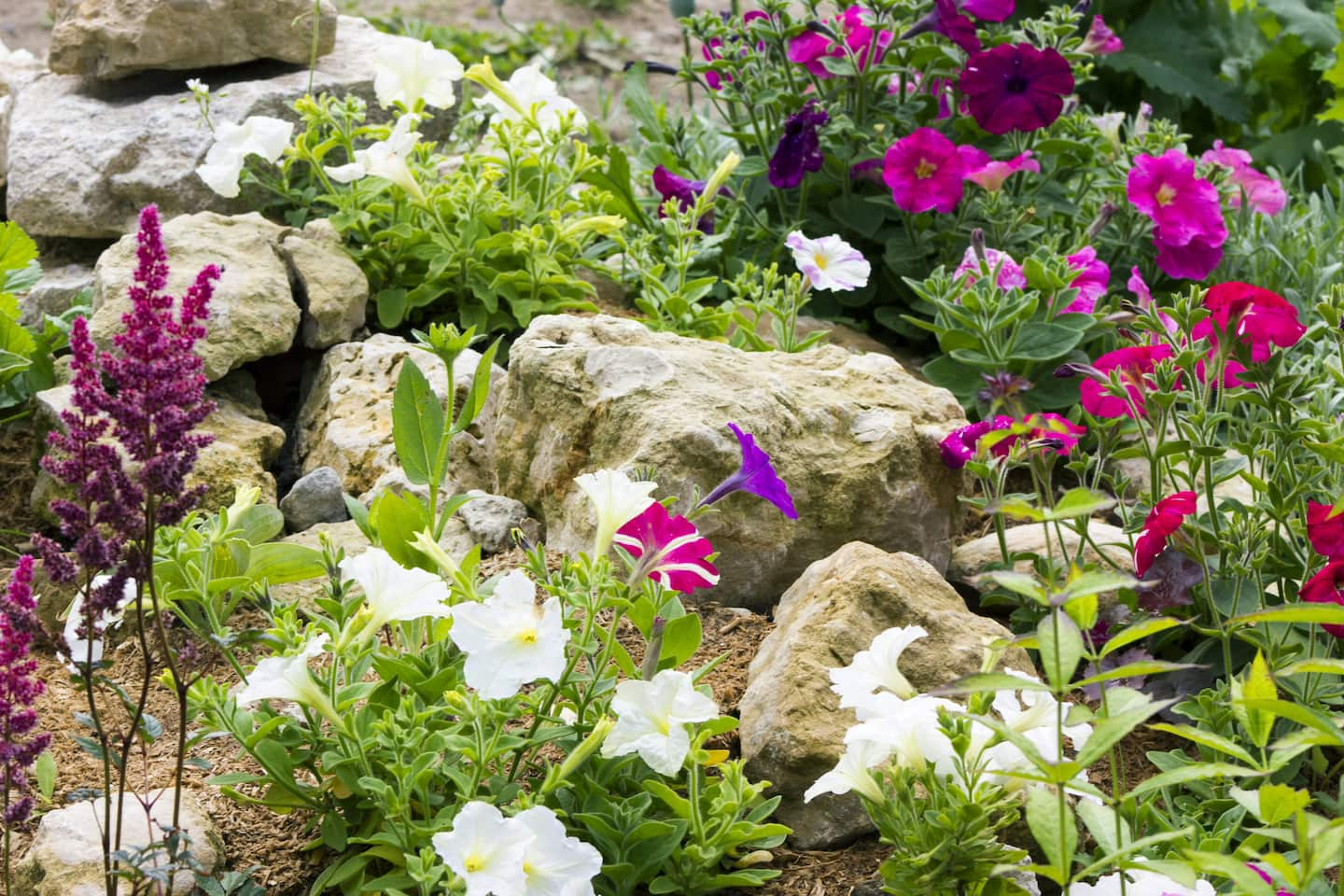 11 rock garden ideas - Rock Garden Ideas