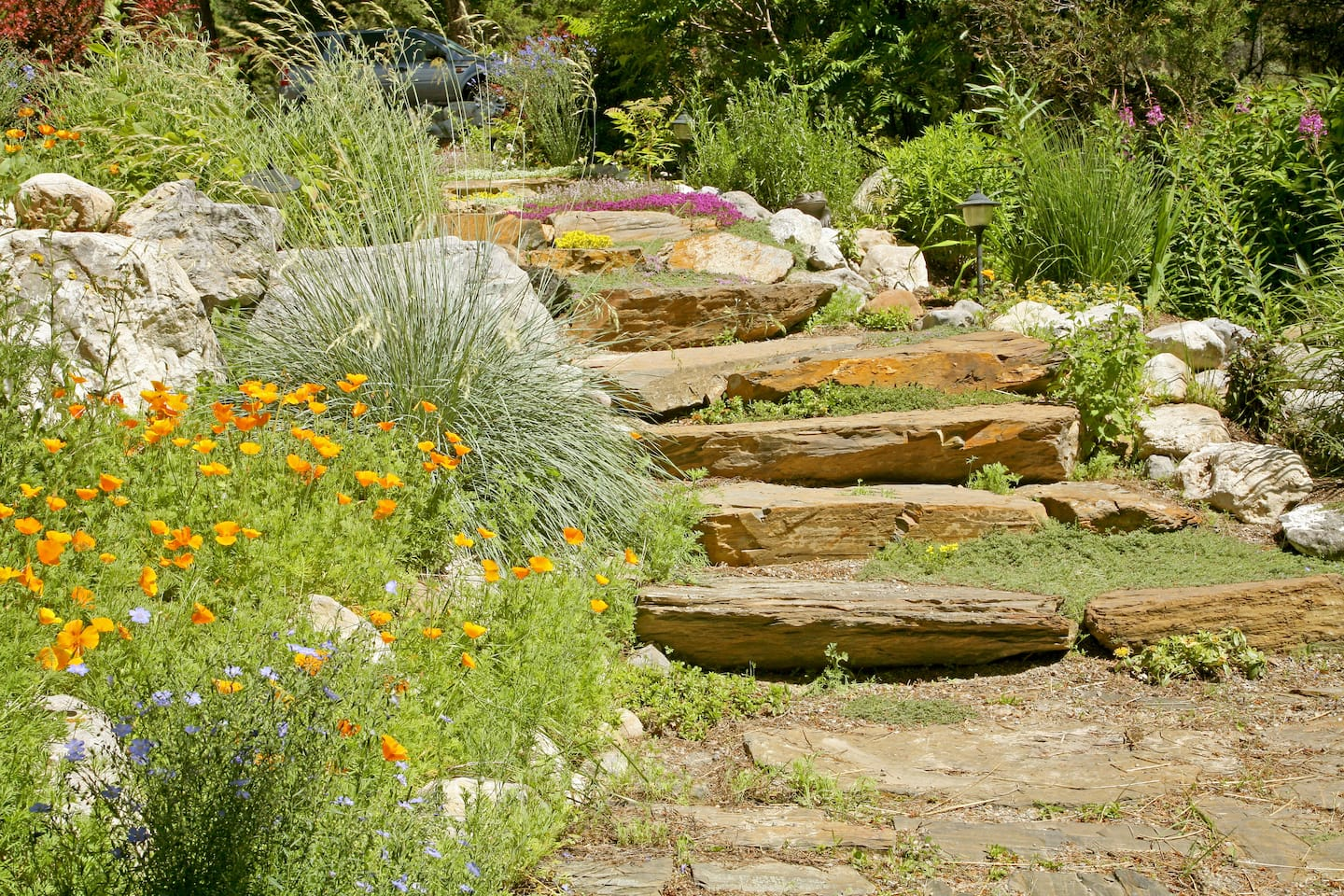 11 Ideas for Creating a Rock Garden | Angie\'s List