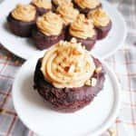 gluten-free cupcakes with peanut butter filling and frosting