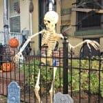 dc_skeleton