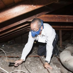 home inspector in the attic (Photo by Photo by Sara Cozolino)